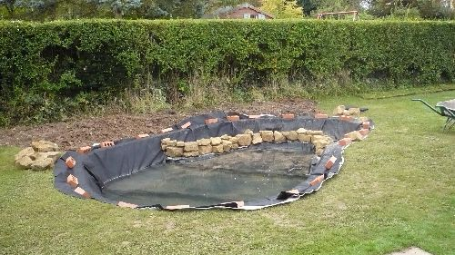 Thepondlifeco design construction and refurbishment of for Koi pond builders east rand